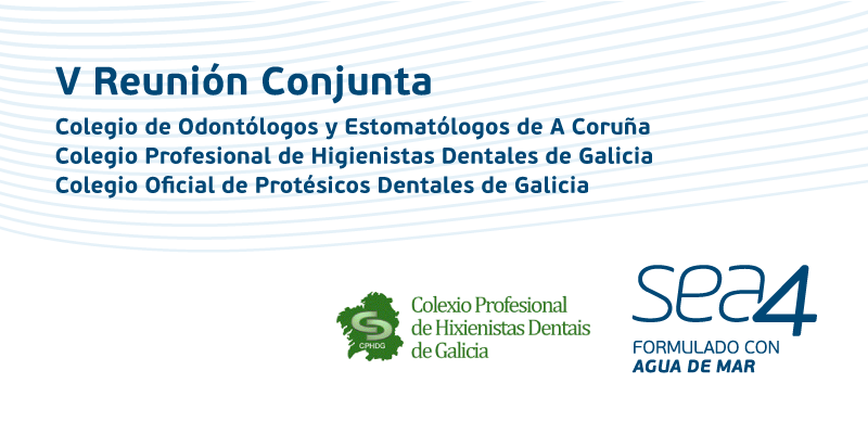 Sea4 participó en la V Reunión Conjunta de tres colegios profesionales de Galicia